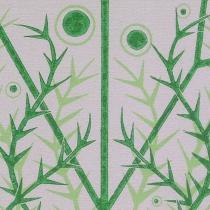 06 Carum verticillatum II