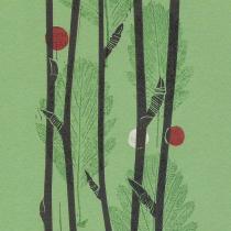 14 Sorbus leyana II
