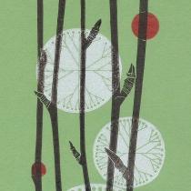 15 Sorbus leyana III