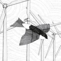 Trajectory III: Wind farm